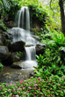 Beautiful waterfall in the garden